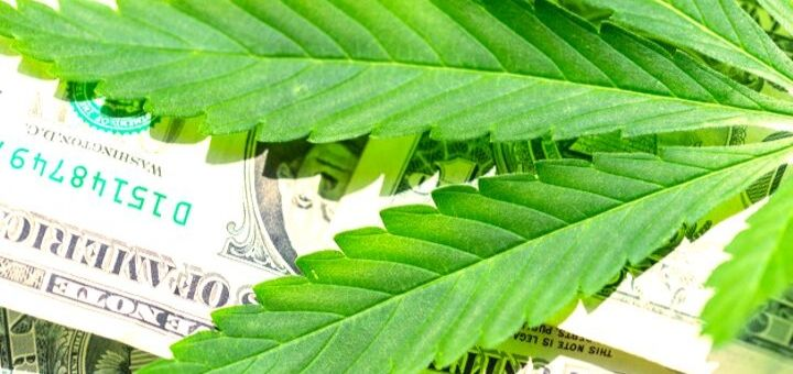 Cannabis Market is Trying to Make Billions